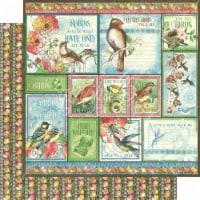 Bird Watcher Double-Sided Cardstock 12 X12 -Look Up! - 1
