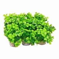 Aquatop Aquatic Supplies 003660 3 in. Plant Power Pack, Green - Pack of 12 - 12