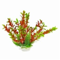 Aquatop Aquatic Supplies 003588 12 in. Hygro-Like Aquarium Plant with Weighted Base - Green & - 1