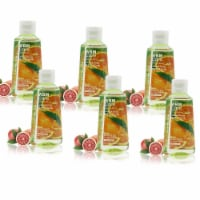 WBM Care Advanced Hand Sanitizer, Alcohol-Based, Blood Orange – Pack of 48/3.5 Oz Each