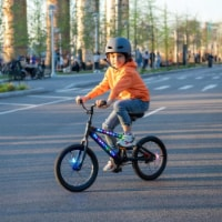 Jetson Aura Light-Up Bike - 16 , Black - 1 unit