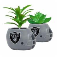 NFL Las Vegas Raiders Team Pride Mini Faux Succulents in Ceramic Helmet Planters