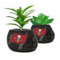 NFL Tampa Bay Buccaneers Team Pride Mini Faux Succulents in Ceramic Helmet Planters