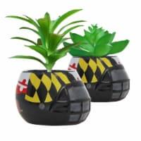 Maryland Terrapins Team Pride Mini Faux Succulents in Ceramic Helmet Planters