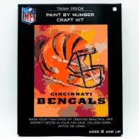 NFL Cincinnati Bengals Team Pride Paint by Number Craft Kit - 1 ct