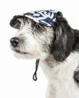 Pet Life HT5ZBMD Bone Cappa Graffiti Sculptured UV Protectant Adjustable Fashion Dog Hat - Ze - 1
