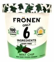 Fronen Dairy Free Mint Chip Dessert - 1 pt