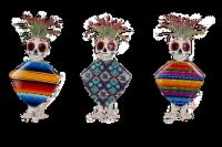 Fiesta Skeletons Tillandsia in Poly-Resin Planter - Assorted