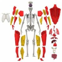 Be Amazing Toys BAT2331 8 Plus Age Interactive Human Body - 1