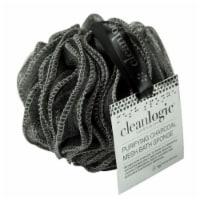 Cleanlogic - Charcoal Black Brush - 1 CT
