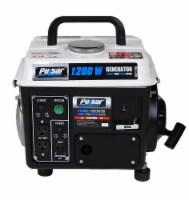 Pulsar 1200 Peak Watt 900 Running Watt Portable 2-Cycle Generator