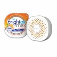 Bright Air  Air Freshener 900436