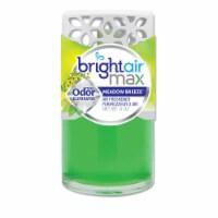 Bright Air  Air Freshener 900441