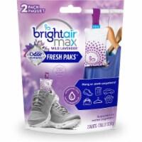 Bright Air  Air Freshener 900611 - 1