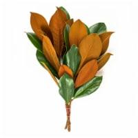 Magnolia Consumer Bunch - 1 ct