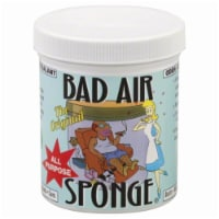 Bad Air Sponge The Original
