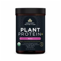 Ancient Nutrition Plant Protein+ Berry Vegan Superfood Protein Powder - 11 oz