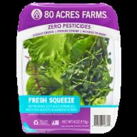 80 Acres Farms SPRING break Salad Blend Mix with Lettuce Pea Shoots & Sorrel