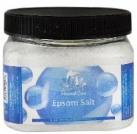 White Egret Personal Care Epsom Salt Unscented - 16 oz
