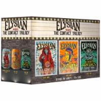 Elysian IPA Variety Pack - 12 cans  / 12 fl oz