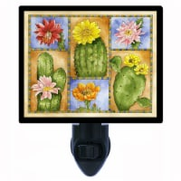 Southwest Decorative Photo Night Light. Cacti Sampler. Free Extra Picture For Lights. - 1