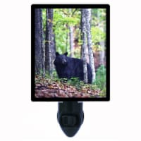 Decorative Photo Night Light. Black Bear. Free Extra Picture For Lights. - 1
