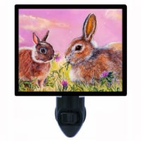 Bunny Decorative Photo Night Light. Evening Clover Meal. Free Extra Picture For Lights. - 1