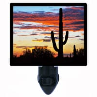 Southwest Cactus Decorative Photo Night Light. Hands Off. Free Extra Picture For Lights. - 1