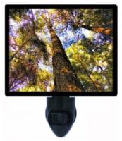 Trees Decorative Photo Night Light. Free Switchable Insert. Beyond Dreams - 1