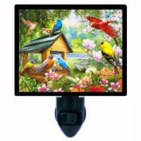 Bird Decorative Photo Night Light. Dinner Time. Free Extra Picture For Lights. - 1