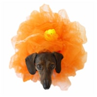 Midlee Loofah Dog Halloween Costume (Large, Orange)
