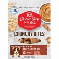 Chicken Soup 418478 12 oz Crunchy Bites Peanut Butter Biscuit Dog Treats Food - 1