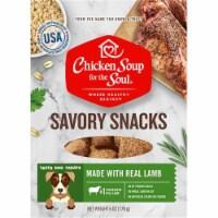 Chicken Soup 418479 6 oz Savory Snacks Soft Lamb Dog Treats Food - 1
