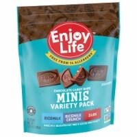 Enjoy Life Minis Chocolate Variety Pack