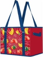 Earthwise Box Tote - Red/Blue
