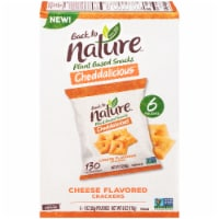 Back to Nature Cheddalicious Cheese Flavored Cracker Pouches 6 Count