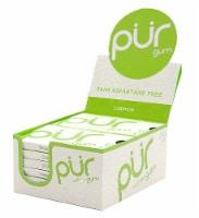 Pur Aspartame Free Coolmint Gum Multipack