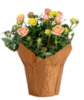 Asca Bicolor Mini Rose Potted Plant - 6-inch pot