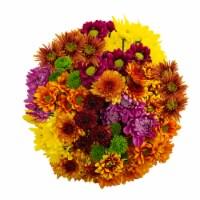 Fall Poms Bouquet - 16-stem