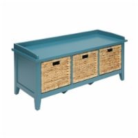 ACME Flavius Storage Bench in Teal - 1