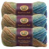 Lion Brand Shawl in a Ball Yarn - Prism
