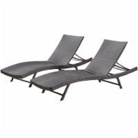 Noble House Kauai Chaise Lounge (Set of 2) in Brown - 1