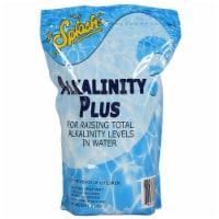 Splash OMGALK5PCH 5 lbs Alkalinity Increaser Pouch - 1