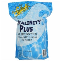 Splash OMGALK10PCH 10 lbs Alkalinity Increaser Pouch - 1