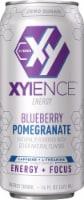 Xyience Xenergy Blu Pom Energy Drink - 16 fl oz