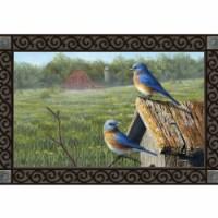 Magnet Works MAIL11808 Summer Bluebirds MatMates Doormats - 1