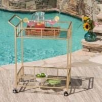 Alice Outdoor Industrial Modern Iron and Glass Bar Cart, Gold - 1 unit