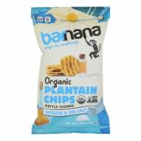 Barnana - Salt Vinegar Plantain Chips - Case of 6 - 5 oz - 5 OZ