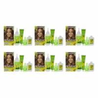 Garnier Nutrisse Nourishing Color Creme  63 Light Golden Brown  Pack of 6 Hair Color 1 Applic