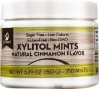 Vitacost Xylitol Cinnamon Mints